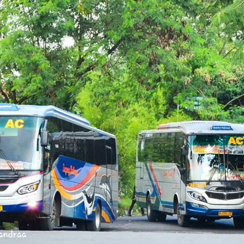 Harga Tiket dan Jadwal Bus Sugeng Rahayu Mei 2017