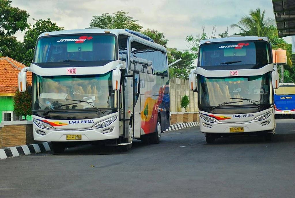 Harga Tiket dan Agen bus Laju Prima Mei 2017 Terbaru